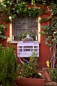 Ornate, lilac birdcage below rose climbing on red façade