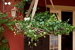 Wicker basket of ivy and berries hung in front of red façade