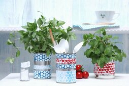 Decorated tin cans holding kitchen utensils and herbs