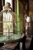 Flower-shaped candlestick in vintage birdcage