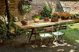 Potted plants on wooden table and simple folding chairs in front of brick wall in courtyard