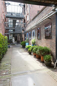 Planters on paved path running between brick façades of former, converted warehouses
