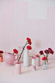 Red carnations in various vases against pink background