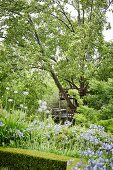 View through flowering agapanthus to summery seating area with wooden platforms on different levels in and around tree