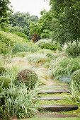 Wet stone steps in mature garden with ornamental grasses and shrubs