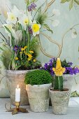 Vintage stone pots of spring flowers and cactus next to lit candle in brass candlestick