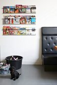 Small, black dog sitting on grey floor below magazine rack on wall and next to couch