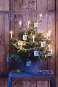 A small Christmas tree decorated with photos of apples and candles