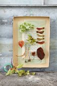 Natural treasures arranged as a picture