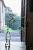 Bottle used as vase in front of open door with view of blurred landscape in background