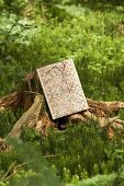Map and reading glasses on old tree stump in woods