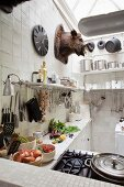 Bowls of vegetables on worksurface below bracket shelves crammed with utensils below hunting trophy in vintage-style kitchen