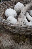 White pumpkins in basket