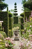 Magnificent topiary garden