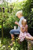 Siblings sitting on rustic wooden bench in garden eating gooseberries