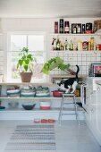 Can on barstool in front of fitted shelves below window in rustic kitchen