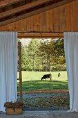 Blick von der Terrasse eines Holzhauses auf weidende Kühe