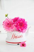 Pink dahlias in vintage kettle