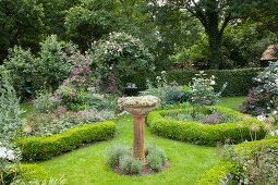 Beds edged by box hedges in idyllic garden