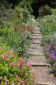 Narrow gravel path with wooden sleepers between bed of flowering plants