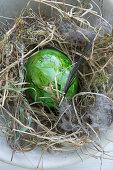 Grün gefärbtes Osterei im Naturnest