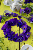 Wreath of horned violets
