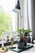 Kerzenständer, Pflanze und Gelenklampe vor dem Fenster