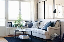 Plants and flowers on coffee table in corner in front of pale sofa with scatter cushions below framed posters