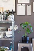 House plant on metal stool next to wire shelves of crockery and kitchen implements against grey wall