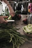 Hands of person chopping vegetables