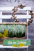 Wreath of acorns, sign and wooden crate of heather on garden chair