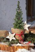 Pflanztopf für Konifere mit Jutesack umwickelt und Sternen dekoriert