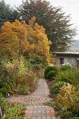 Paved path leading through autumnal herbaceous borders in garden