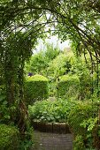 View into green garden through trellis archway