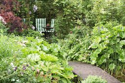 Path leading through lush garden to seating area