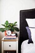 Nachtkästchen mit Grünpflanze neben Bett mit gepolstertem Haupt