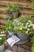 Duftende Kräuter in Zinkwanne und aufgehängte Blumentöpfen auf der Terrasse