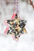 Star-shaped pastry cutter filled with bird cake and hung up in garden