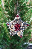 Star-shaped pastry cutter filled with bird cake and red berries hung from fir tree in garden