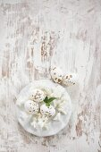 Speckled Easter eggs and white flowers on plate