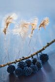 Federn sind mit Draht an einem Zweig befestigt, bemalte Zapfen