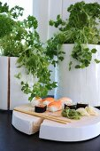 Sushi and chopsticks on white-painted wooden board in front of potted herbs