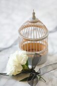 White carnation tied with black ribbon and birdcage ornament on marble surface