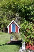 Shed in sunny garden with tall trees
