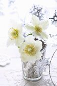 Hellebores in silvered glass vase decorated with festive silver garland