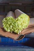 Buchseiten-Herz mit grünen Nelken