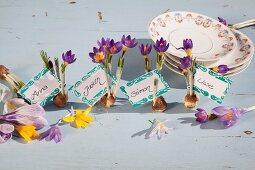 Dekorative Namenskärtchen mit Blumenzwiebeln und lila blühenden Krokussen neben Tellerstapel