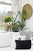 Houseplants on windowsill, brass plate on wall and comfortable scatter cushions on white couch in corner of living room