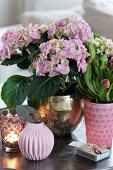 Hydrangea, pitcher plant and vases on tray