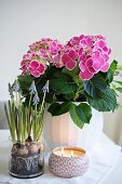 Spring arrangement of hydrangeas, grape hyacinths and candle